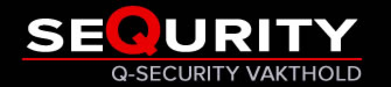 Q Security
